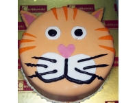 tort kot