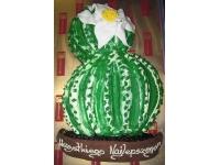tort kaktus