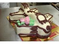 tort samolot