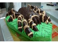 tort pająk