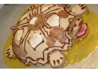 tort żołw