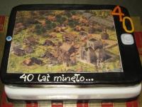 40 lat tort gra