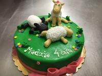 tort owce