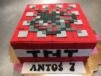 tort dla Antosia